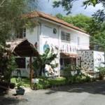 Jacaranda Hotel 1.