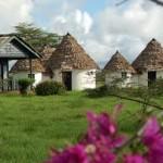 Momella wildlife Lodge 1.