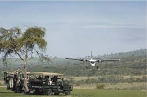 air chater fly in safaris